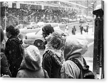 Canvas Print featuring the photograph Tasteofsnow by Dave Beckerman