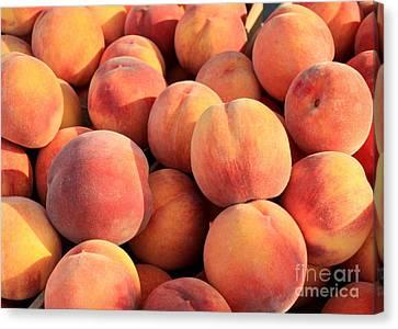 Tasty Peaches Canvas Print by Carol Groenen