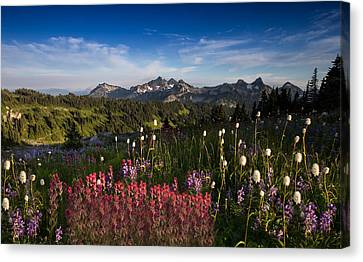 Tatoosh Mountain Range Canvas Print by Larry Marshall