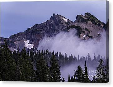 Tatoosh Range Canvas Print