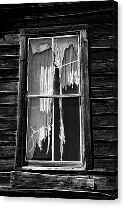 Tattered And Torn Canvas Print by Cat Connor