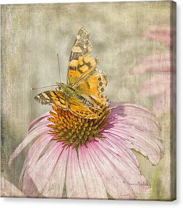 Tattered Butterfly Canvas Print