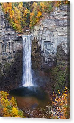 Taughannock Falls In Autumn Canvas Print