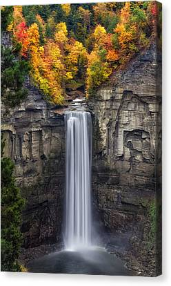 Wet Leaves Canvas Print - Taughannock by Mark Papke