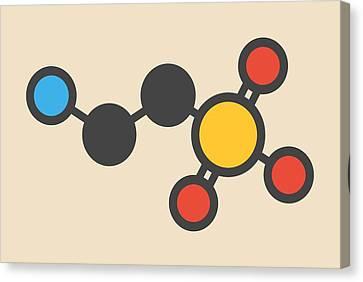 Taurine Molecule Canvas Print by Molekuul