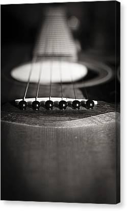 Taylor Guitar Canvas Print