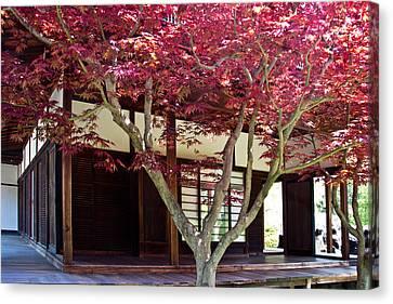 Tea House Thru The Maple Canvas Print by Tom Gari Gallery-Three-Photography