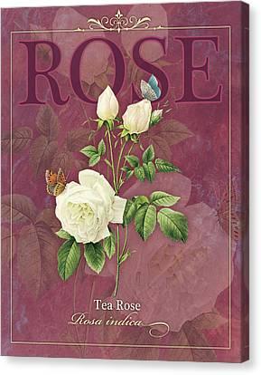 Tea Rose Canvas Print by Tammy Apple