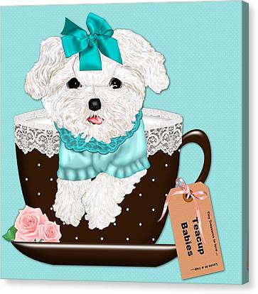 Teacup Baby Maltese Canvas Print by Margaret Newcomb