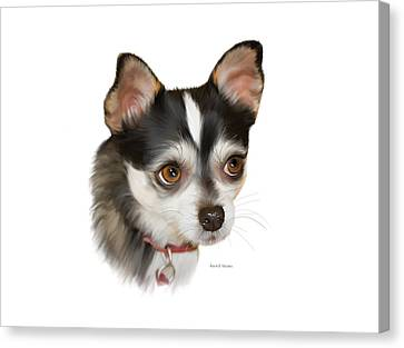 Teacup Chihuahua Canvas Print by Angela A Stanton