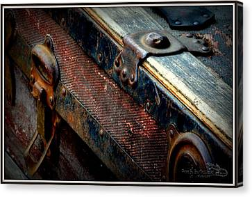 Teak Trunk Canvas Print by Guy Hoffman