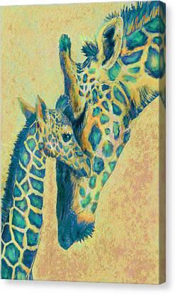 Teal Giraffes Canvas Print