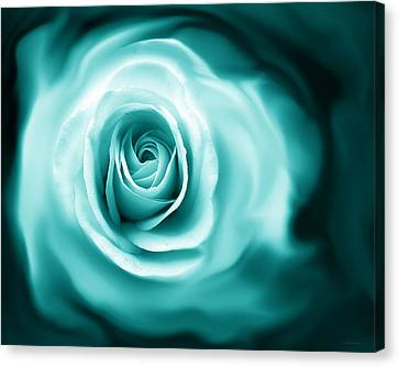 Teal Rose Flower Abstract Canvas Print by Jennie Marie Schell
