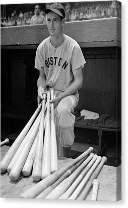Boston Red Sox Canvas Print - Ted Williams by Gianfranco Weiss
