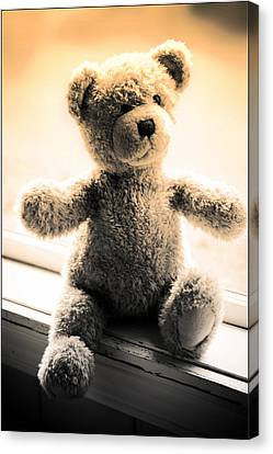 Canvas Print featuring the photograph Teddy B by Aaron Berg
