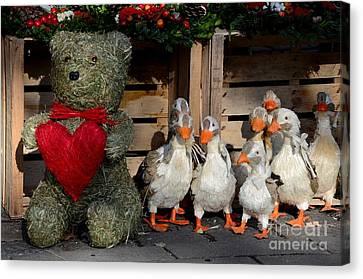 Teddy Bear With Flock Of Stuffed Ducks Canvas Print by Imran Ahmed
