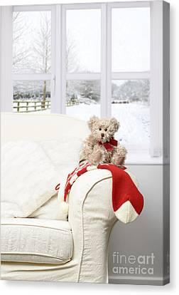 Teddy Sitting On Chair Canvas Print by Amanda Elwell