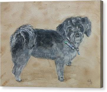 Canvas Print featuring the painting Maltese Puppy  by Kelly Mills