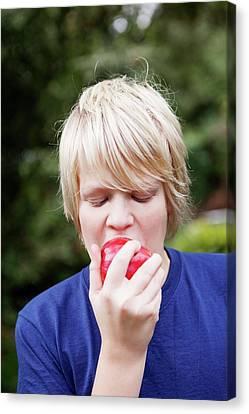 Teenage Boy Eating An Apple Canvas Print by Thomas Fredberg