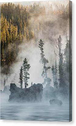 Tees And Boulders In Yellowstone River Canvas Print