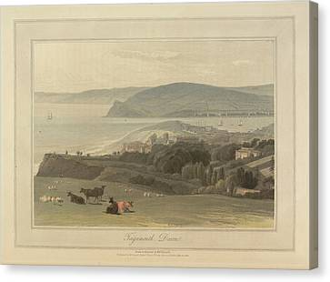 Teignmouth Canvas Print by British Library