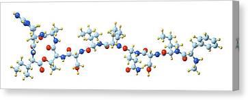 Teixobactin Antibiotic Molecule Canvas Print