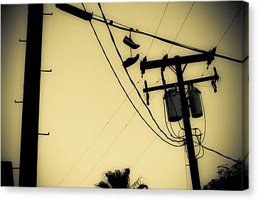 Telephone Pole 8 Canvas Print by Scott Campbell