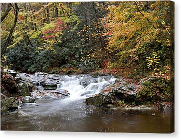 Canvas Print featuring the photograph Telico River Cascade by Robert Camp