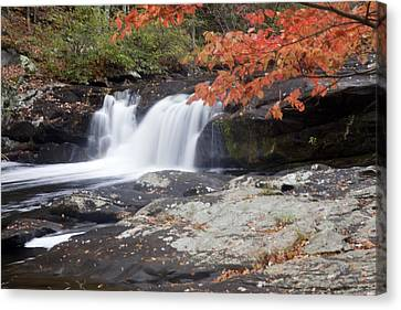 Canvas Print featuring the photograph Telico River Waterfall by Robert Camp