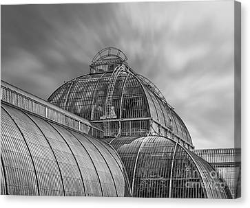 Temperate House Kew Gardens Black And White Canvas Print