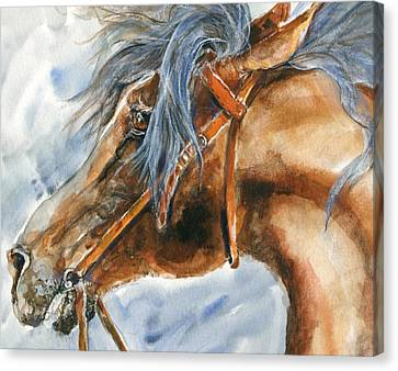 Tempermental Canvas Print by Mary Armstrong