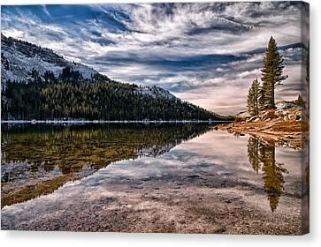 Mountian Canvas Print - Tenaya Lake Reflections by Cat Connor