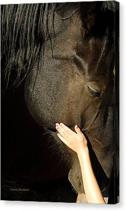 Tenderness Canvas Print
