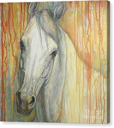 Horse Canvas Print - Tenderness by Silvana Gabudean Dobre