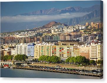 Tenerife Morning Canvas Print by Brian Jannsen