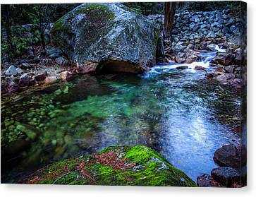Teneya Creek Yosemite National Park Canvas Print by Scott McGuire