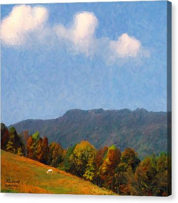 Tennessee Stud Canvas Print by Spyder Webb