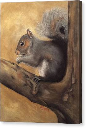 Tennessee Wildlife - Gray Squirrels Canvas Print by Annamarie Sidella-Felts