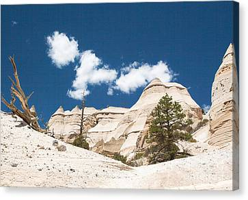 Canvas Print featuring the photograph High Noon At Tent Rocks by Roselynne Broussard