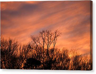 Canvas Print featuring the photograph Tequila Sunset by Bill Swartwout