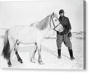 Terra Nova Antarctic Pony Canvas Print