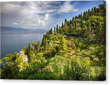 Terraced Hillside Of Portofino Canvas Print by George Oze