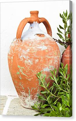 Terracotta Pot Canvas Print