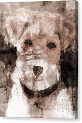 Terrier I Canvas Print by Lutz Baar