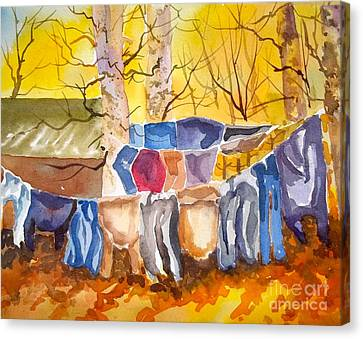 Tess Anne's Laundry Canvas Print by Pat Crowther