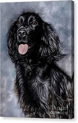Tess Canvas Print by Caroline Collinson