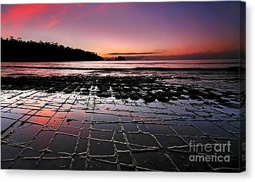 Tesselated Pavement Sunrise Canvas Print by Bill  Robinson