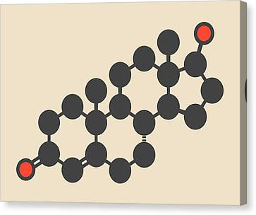 Testosterone Male Sex Hormone Molecule Canvas Print by Molekuul