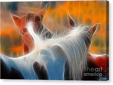 Canvas Print featuring the photograph Teton Horses by Clare VanderVeen