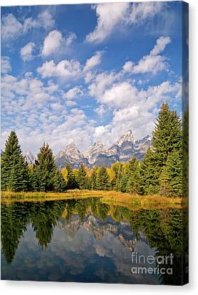Teton Reflections Canvas Print by Alex Cassels